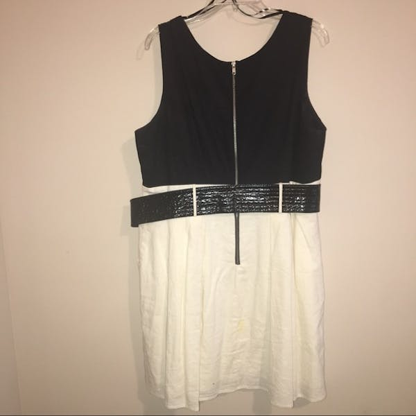 Other NWT Black and Cream A-Line Dress photo three