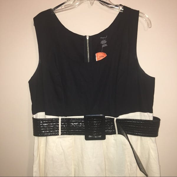 Other NWT Black and Cream A-Line Dress photo two