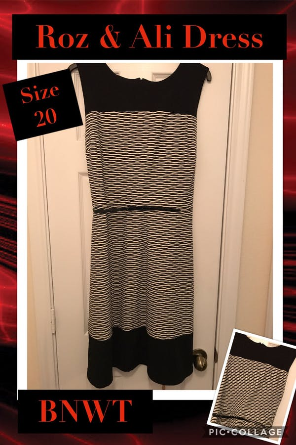 Dress Barn Roz & Ali Dress from Dressbarn