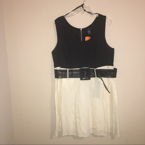 Other NWT Black and Cream A-Line Dress